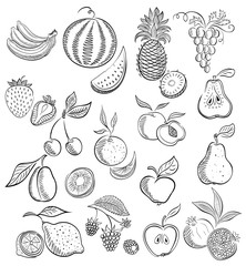 Set from fruit and berries . Drawing sketch.Graphic.