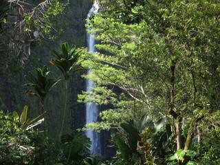 Waterfall, Hawaii, Big Island, USA