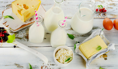 Tuinposter Zuivelproducten Fresh Dairy products