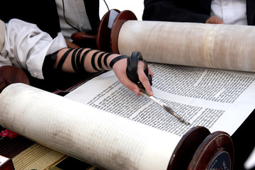 Reading the Torah Wall mural