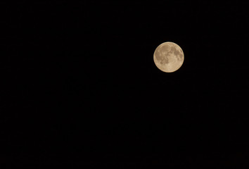view on full moon in sky at night