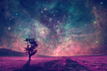 alien landscape with alone tree in the meadows-elements of this image are furnished by NASA