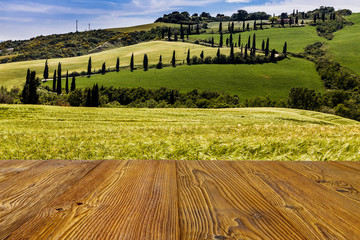 Wall Mural - Tuscany road with cypress trees, Val d'Orcia, Italy