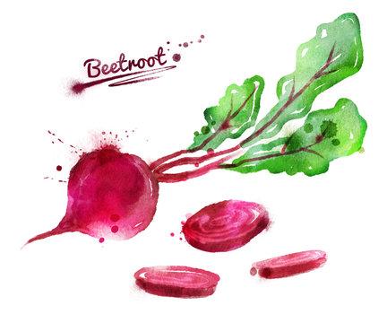 Watercolor beetroot