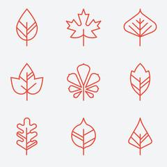 Leaf icons, thin line style, flat design