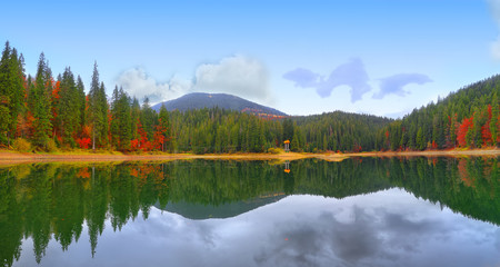 picturesque lake in the autumn forest