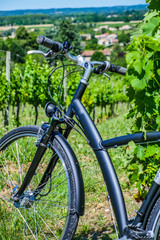 Wine Tourism-Bicycle in Bordeaux vineyards