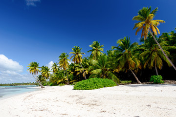 Recess Fitting Caribbean Amazing view of Caribbean beach with white sand and beautiful ex
