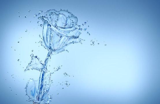 flower made of water splashes