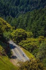 Ariel view of cyclist on tree lined mountain road