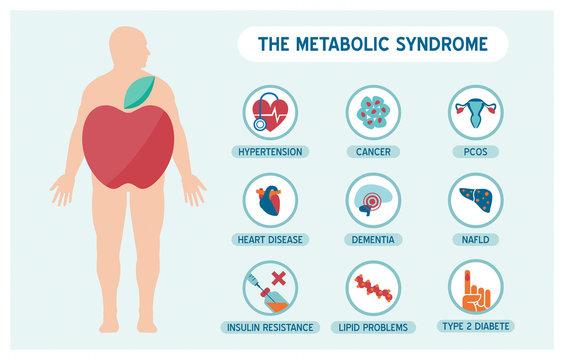 The metabolic sundrome