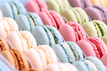 Printed kitchen splashbacks Macarons Colorful Macarons