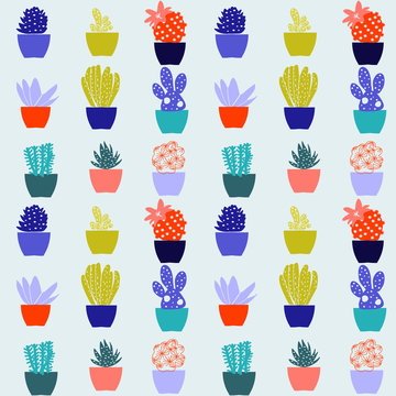 Flat pattern of cactus house plants in pots