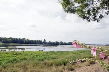 Une vue de Bouchemaine, La pointe, confluence de la Maine et de la Loire (France)