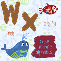 Sea very cute  Alphabet.marine set in vector.W and X letter.Whal