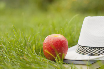 Sunhat, book and fresh ripe red apple lying on a lush green garden