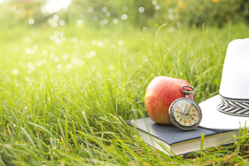 Sunhat, book, clock and fresh ripe red apple lying on a lush green garden