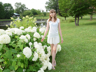 白い紫陽花の花と女性