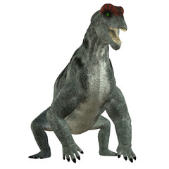 Moschops Herbivore Dinosaur - Moschops was a primeval herbivorous dinosaur that lived in South Africa in the Permian Period.