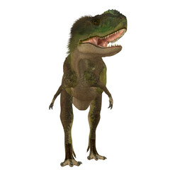 Rugops Carnivore Dinosaur - Rugops was a carnivorous theropod dinosaur that lived during the Cretaceous Period of Africa.