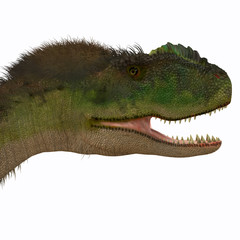 Rugops Dinosaur Head - Rugops was a carnivorous theropod dinosaur that lived during the Cretaceous Period of Africa.