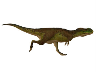 Rugops Dinosaur Side Profile - Rugops was a carnivorous theropod dinosaur that lived during the Cretaceous Period of Africa.