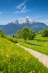 Fototapete - Idyllic landscape in the Alps with meadows and flowers