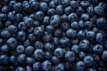 Fresh fruit of blueberry from top view