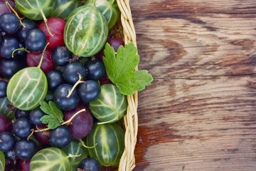 background with berries of gooseberry and black currant