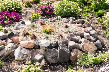 Steingarten Mit Verschieden Blumen Und Pflanzen