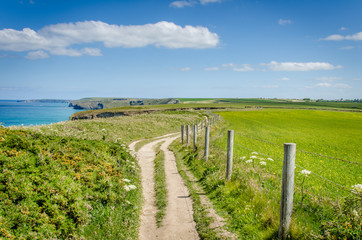 Clifftop Path along the Coast of Cornwall