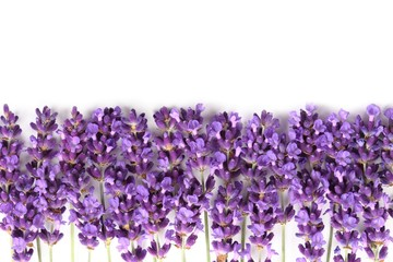 Wall Mural - Frame with lavender