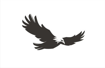 Wall Mural - Eagle Fly