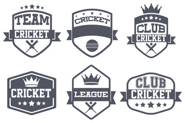 Set of Vintage Cricket Club Badge and Label