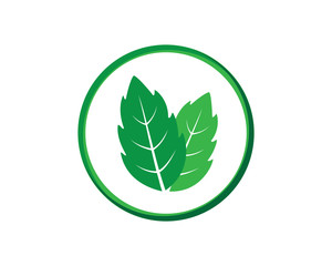 Mint Leaves Icon