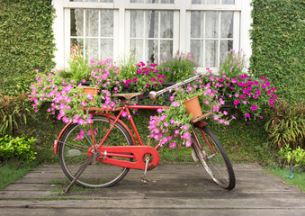 red bicycle with flower