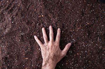 土を触っている手
