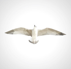 polygonal seagull in flight on a white background