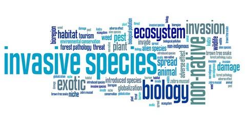 Invasive species word cloud Wall mural