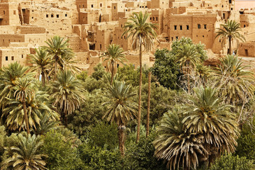Palm trees and the historical village in Ourzazate,Morocco