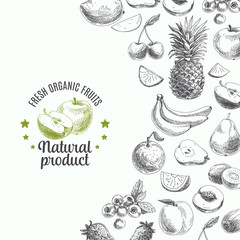 Hand drawn vector illustration with fruits and barries. Sketch.