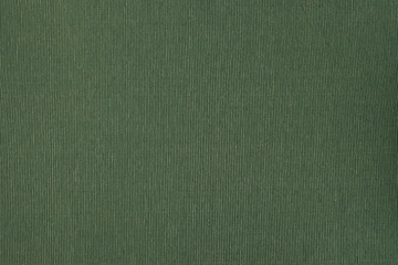 Green woven cotton fabric texture.