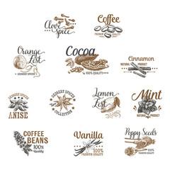 Vector set of Dessert Spices logos, labels, badges and design el