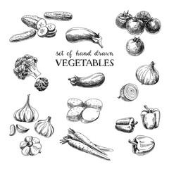 Vector hand drawn sketch vegetable set. Eco foods.