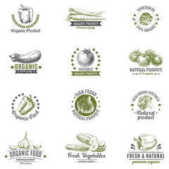 Vector set of labels, logos and hand drawn design elements with