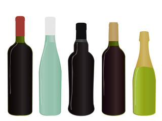 Wines of Europe Full Bottles