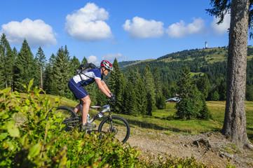 Fototapete - Mountainbiken rund um den Feldberg