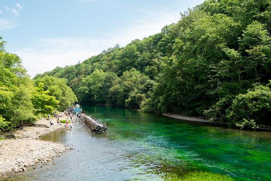 夏の川岸の風景