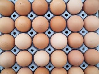 eggs in a cardboard