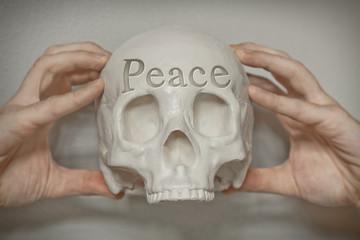 Skull Engraving Peace
